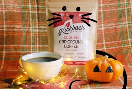 Pumpkin Spice CBD Coffee: Make it at home