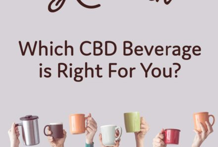 Which CBD Beverage is Right For You?