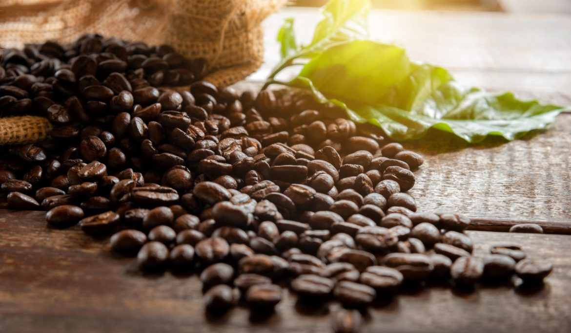 High-Quality Coffee Beans for CBD Infused Coffee